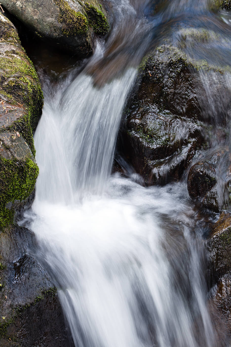 Aira Force Detail - Ullswater