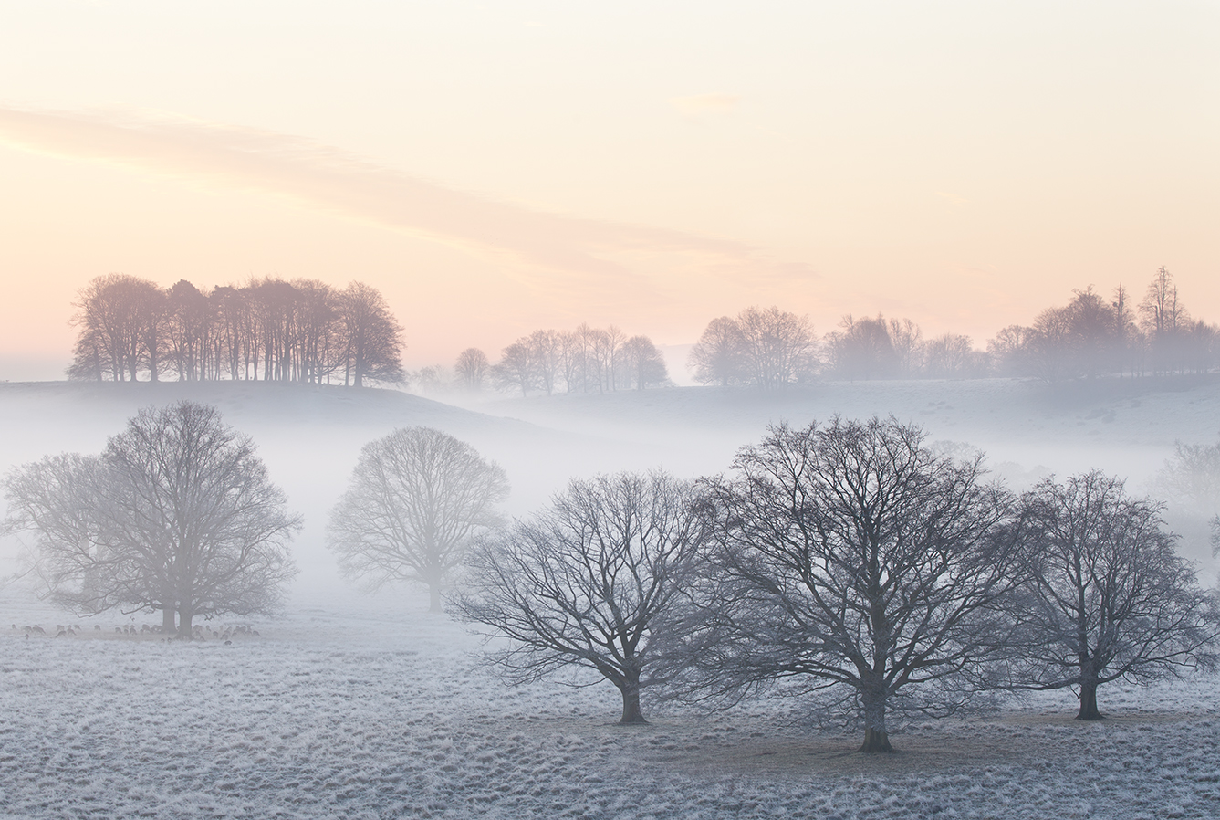 A Winters Sunrise - West Sussex
