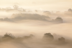 Layers of Mist - Arun Valley