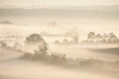 Spring Mist - Arun Valley