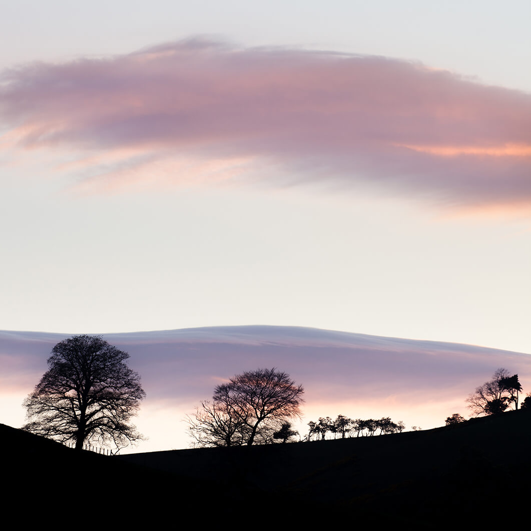 Trees on a Hill - Ullswater